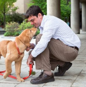 Dog DNA startup announces $75M in venture funding